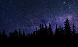Stjernetegn 30 december - Hvad er min personlighed?