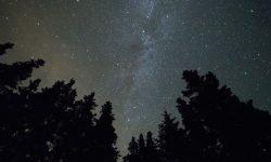 Stjernetegn 29 december - Hvad er min personlighed?