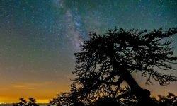 Stjernetegn 28 december - Hvad er min personlighed?