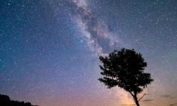 Stjernetegn 14. januar - Hvad er min personlighed?